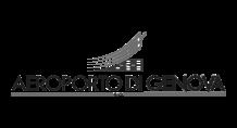 aereoportogen-logo